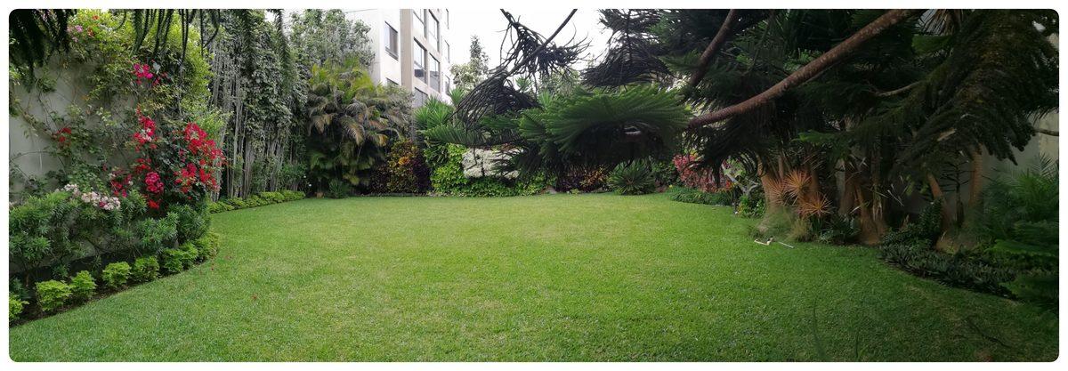 2 de 12: Maravilloso jardín