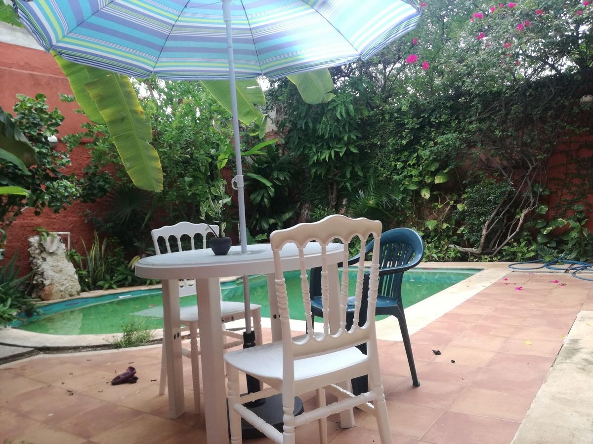 3 de 7: Bonita terraza con piscina y con gran vegetación