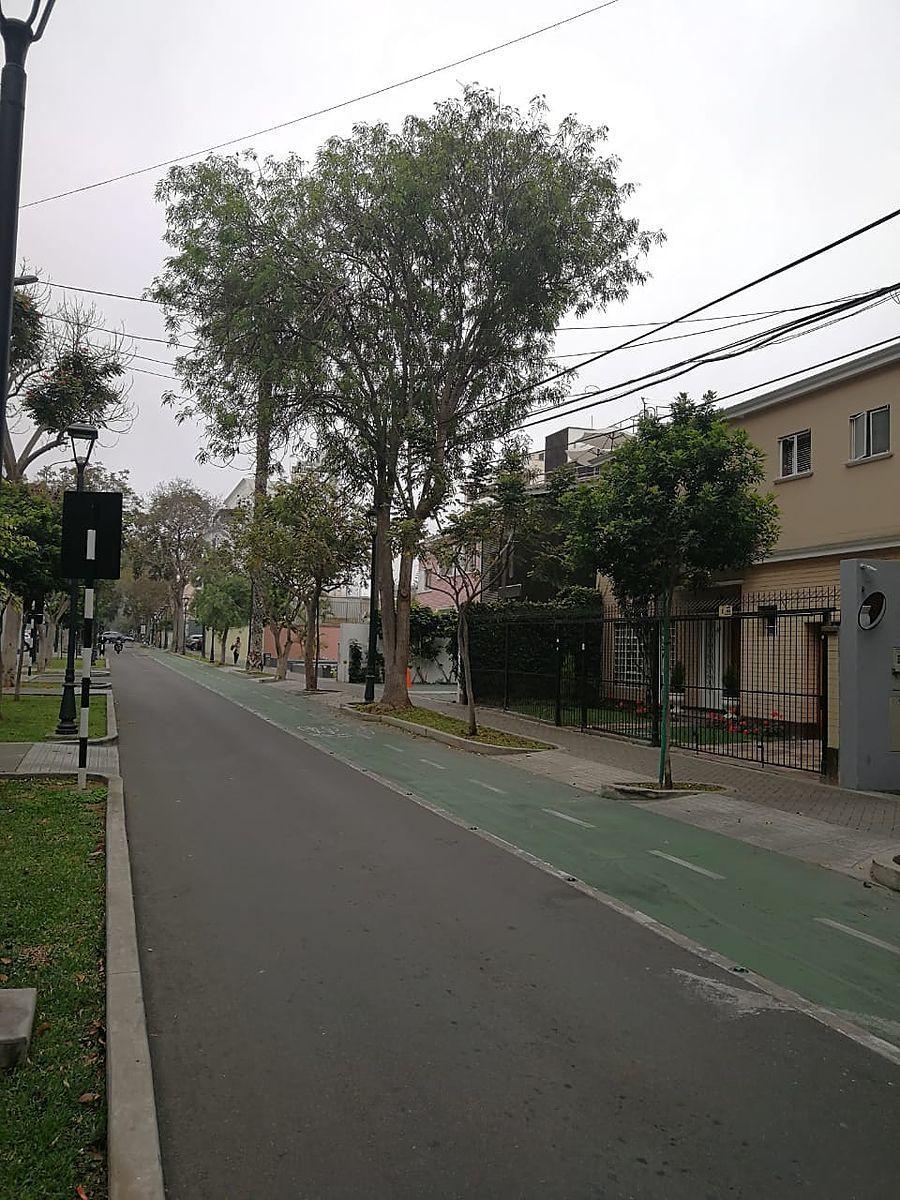 10 de 15: Vista de la calle con paseo para bicicletas
