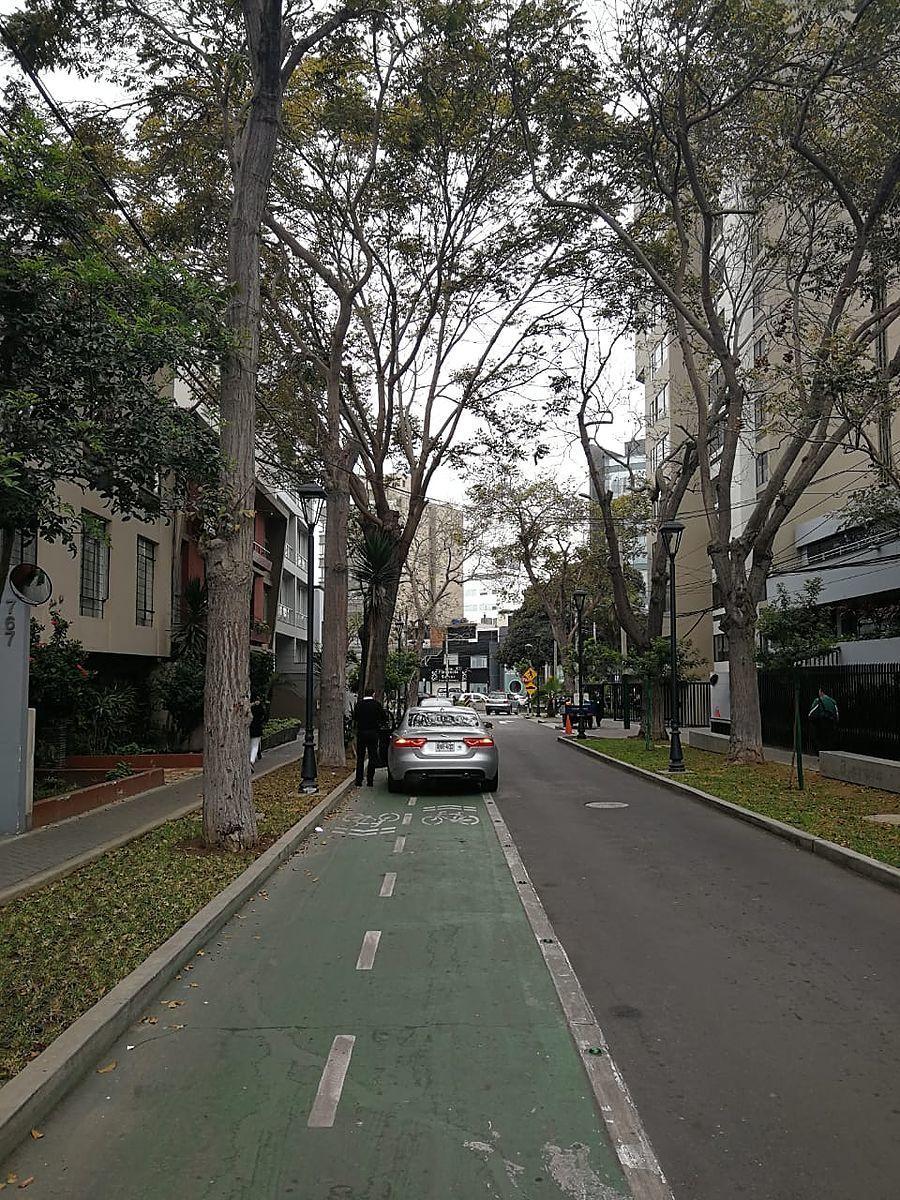 3 de 15: Cuadra Libertadores con muchos árboles...la del terreno!