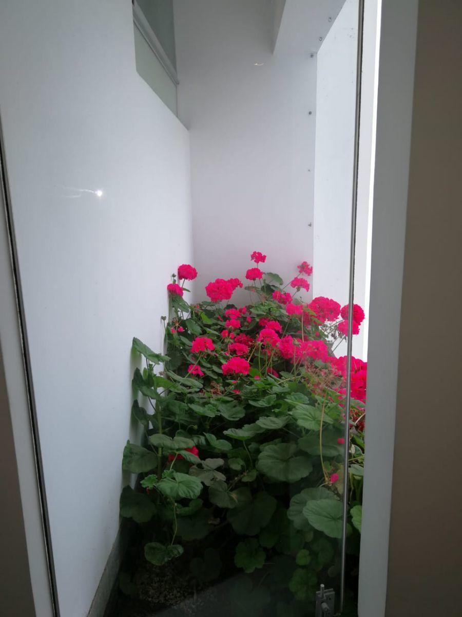 18 de 18: Linda jardinera cerca área dormitorios