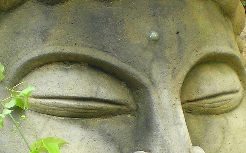 9 de 31: Abundant zen.