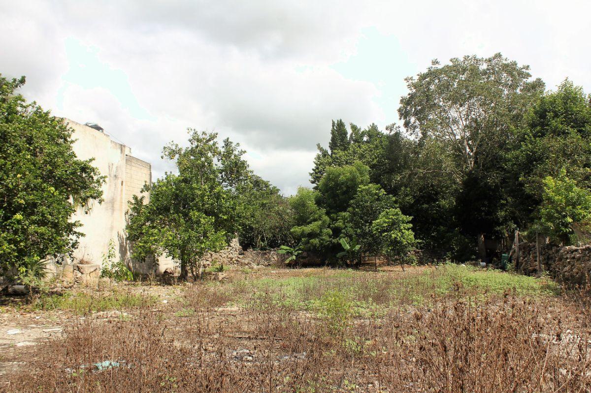 3 de 3: Patio con oportunidad de crecimiento del local o una bodega