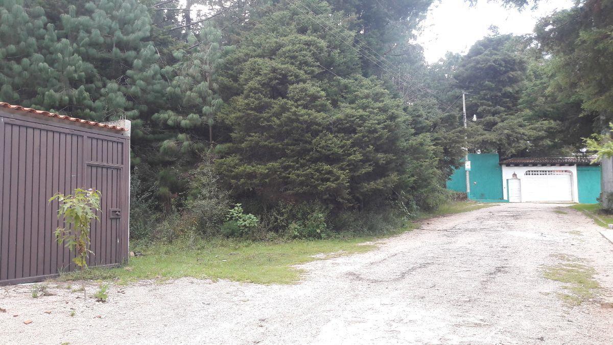 2 de 9: Vista sobre Calle Flamingo esquina Calle Zenzontle