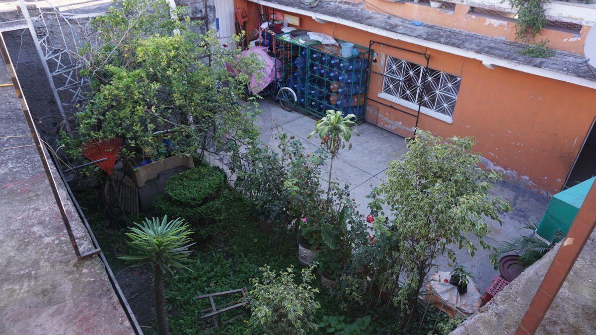 7 de 11: Patio y jardín.
