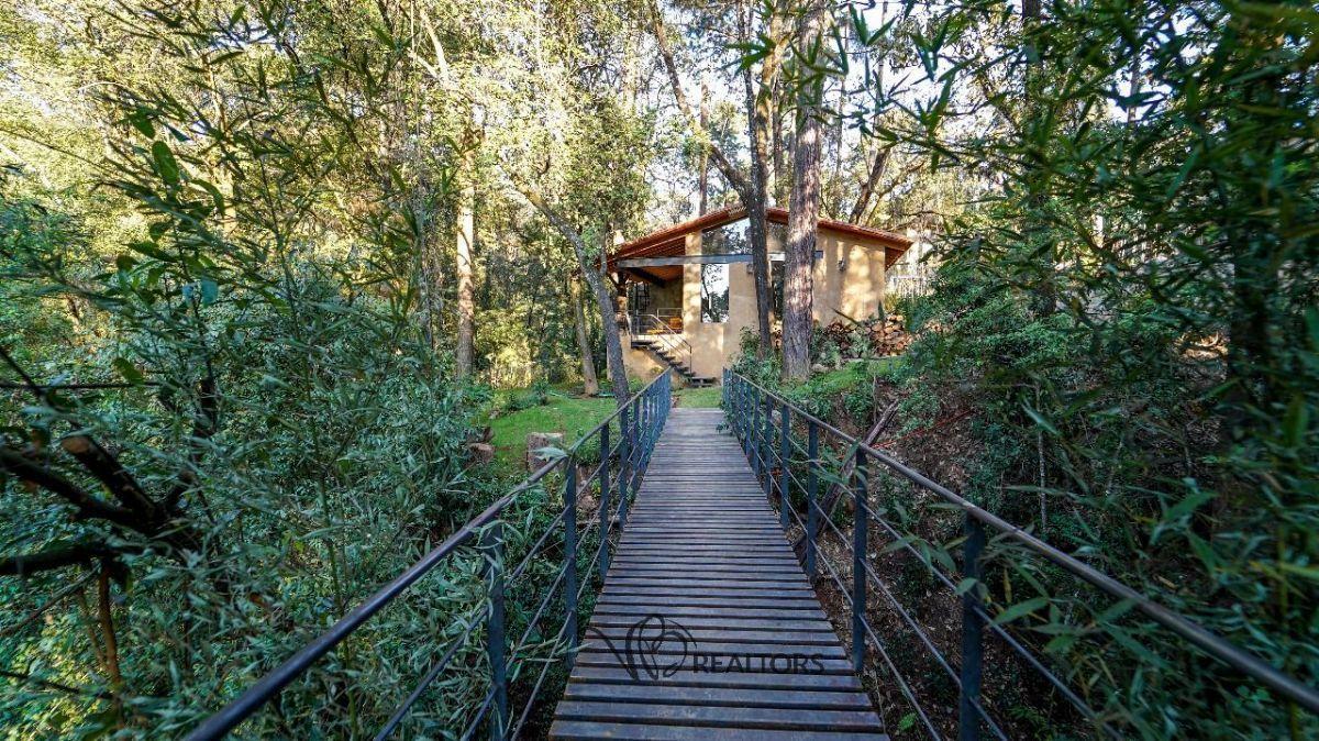 5 de 26: Puente de acceso principal a la propiedad