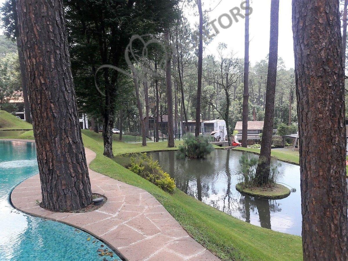 1 de 42: Bosque verde cuenta con lagos y cascadas