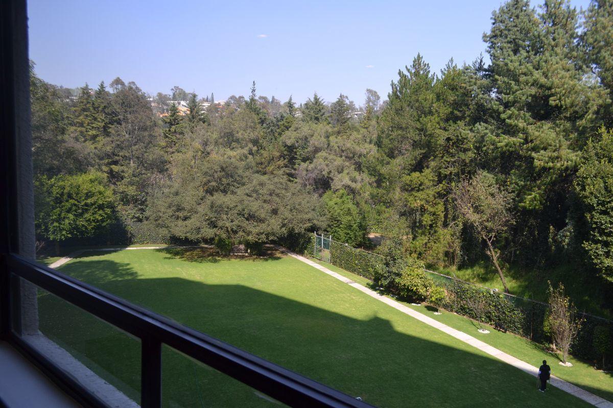 4 de 30: Vista al jardín