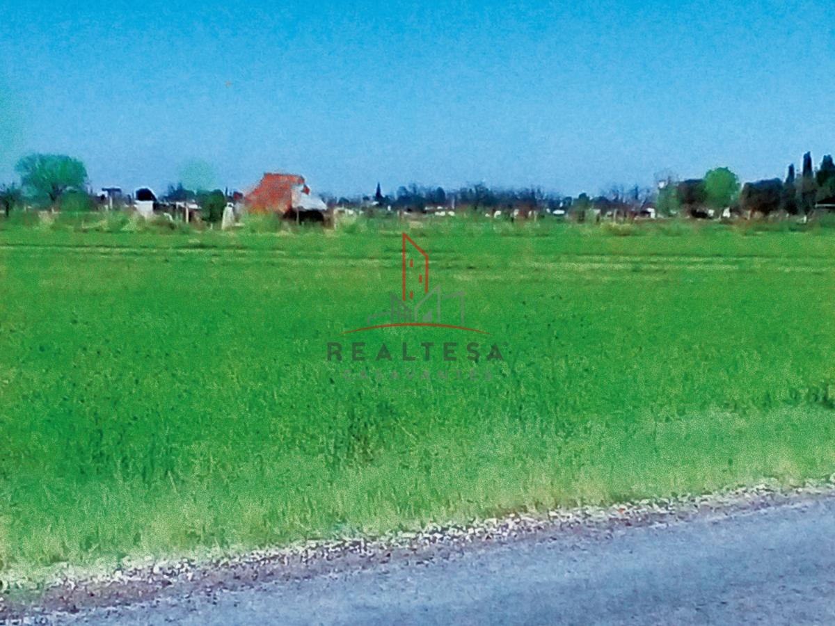 2 de 2: Fondo de los terrenos en Venta.