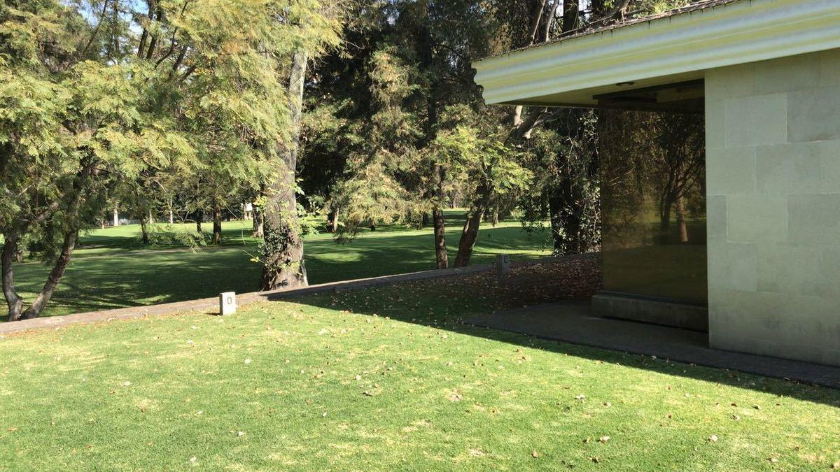 3 de 31: Jardin privado trasero