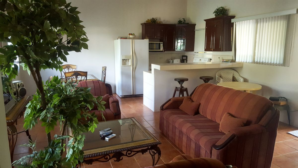 1 of 14: Spacious living room