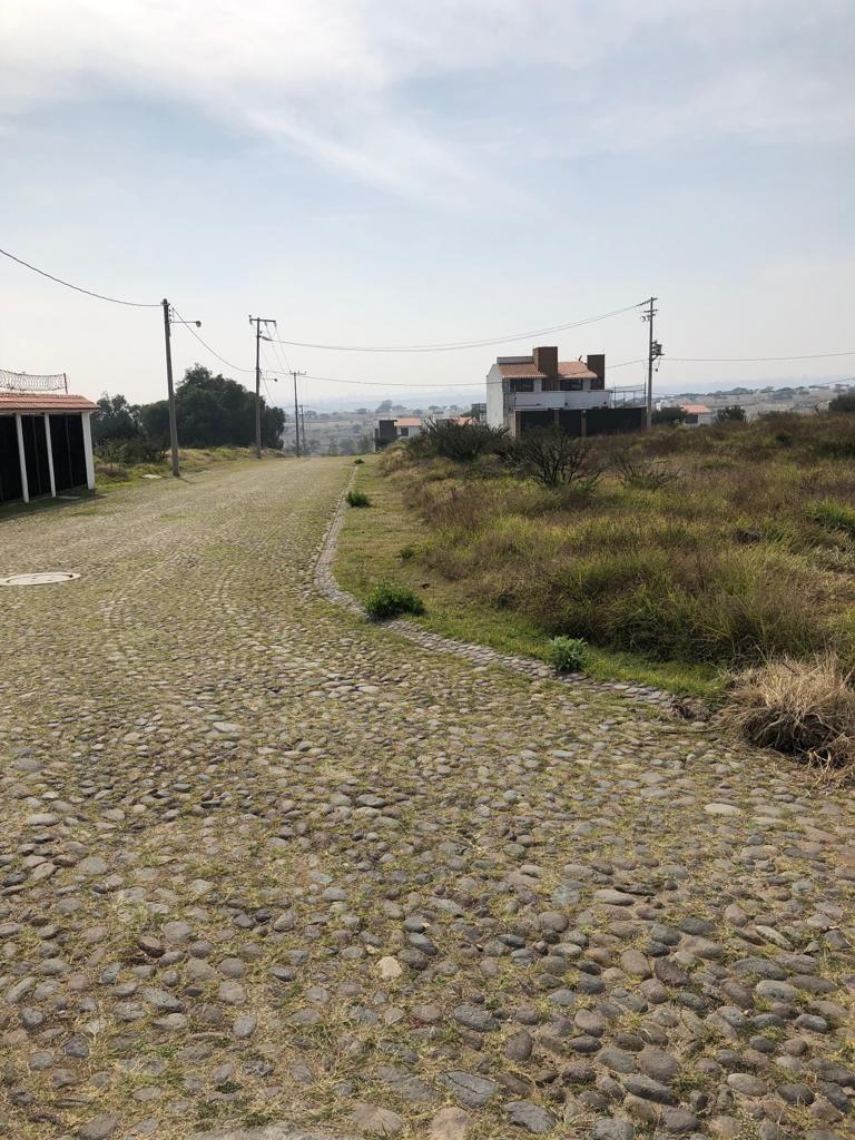 16 de 16: Calles