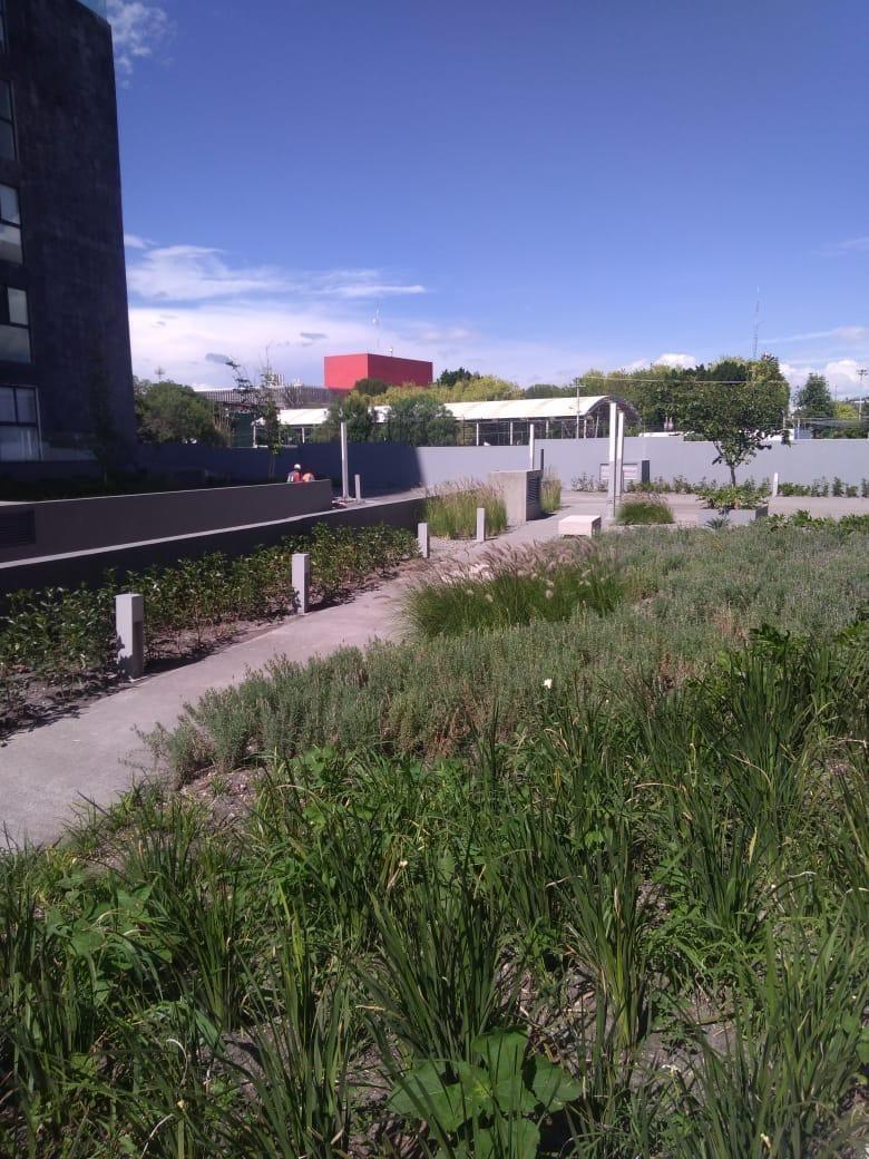 13 de 14: Jardin Areas Comunes