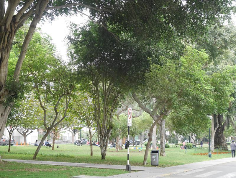 5 de 16: Exclusivo Parque Melitón Porras