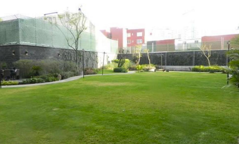14 de 16: Jardín