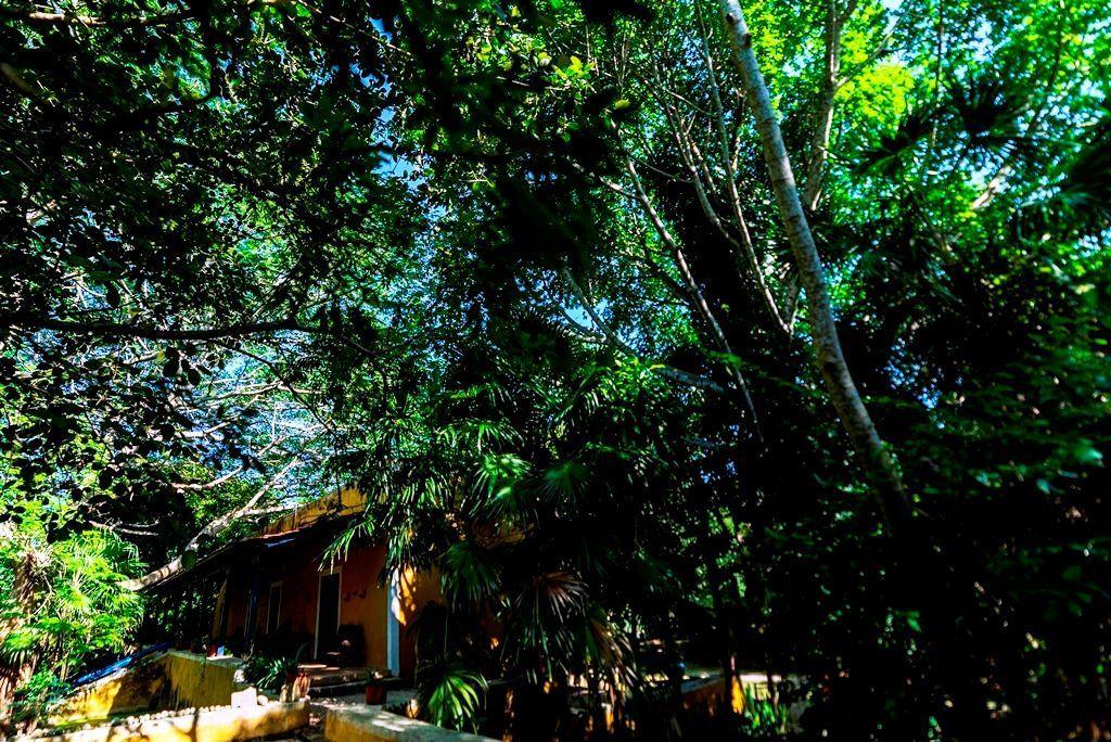 4 de 16: hacienda, hacienda en venta, hacienda en yucatan, comprar