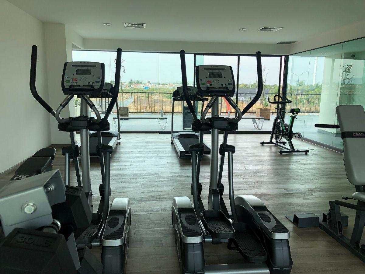 30 de 34: gym