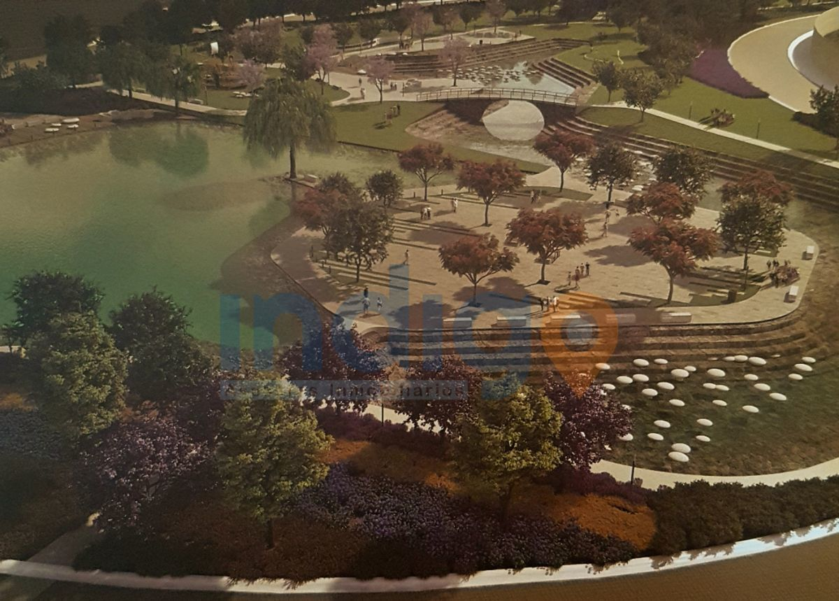 4 de 9: Desarrollo en áreas verdes
