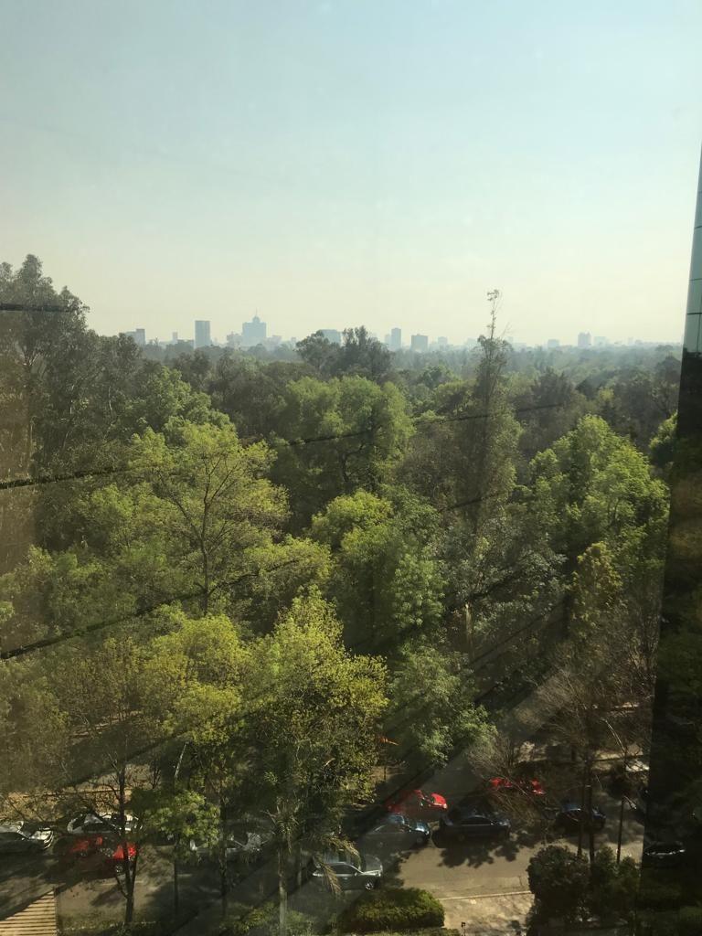 23 de 23: vista al bosque y castillo de chapultepec