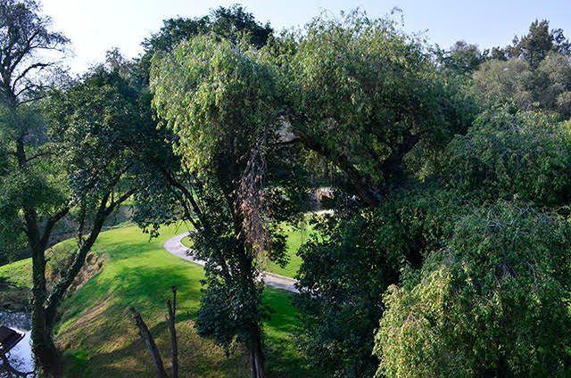 15 de 28: Vista desde planta alta