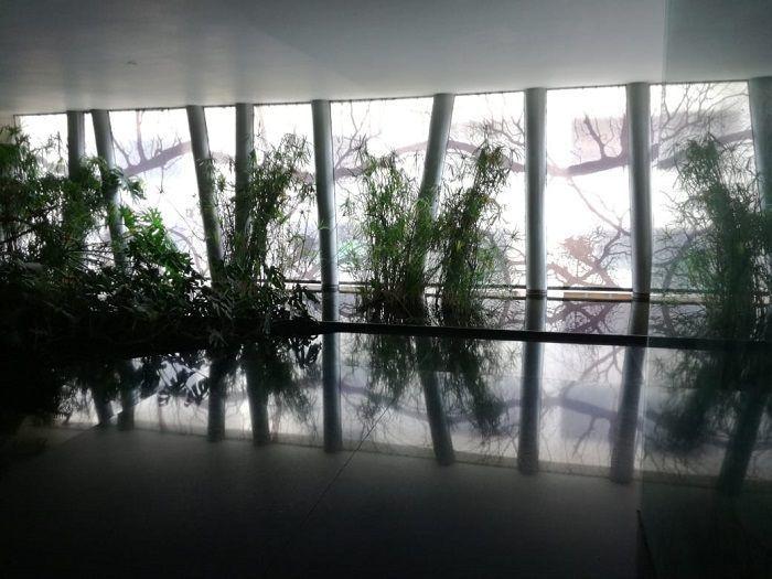 2 de 28: Lobby del edificio