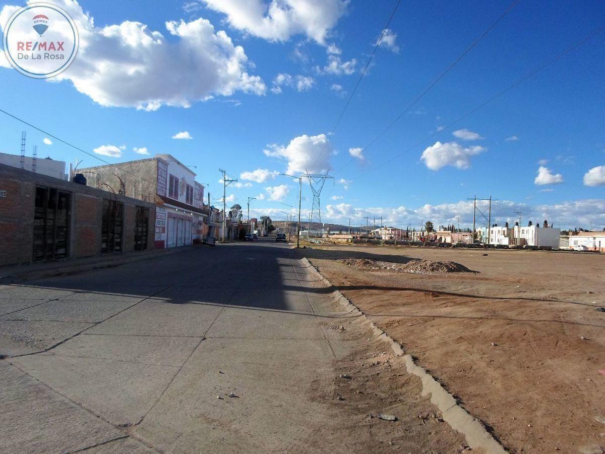 9 de 11: Calles de acceso Tepehuanes que se convierte en Andromeda