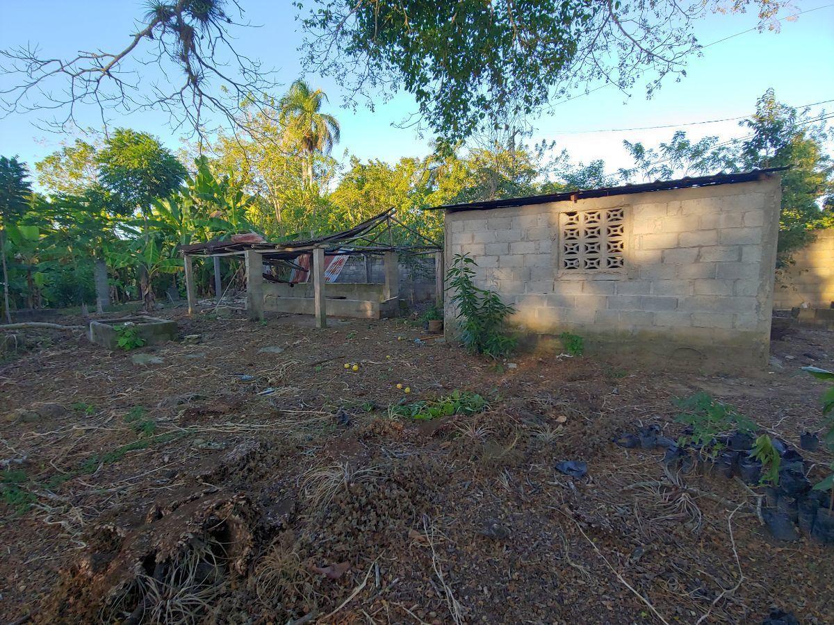 Terreno Para Agricultura Con Cacao y Platanoimage4