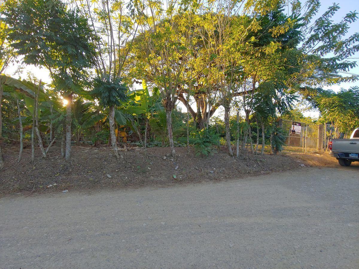 Terreno Para Agricultura Con Cacao y Platanoimage5