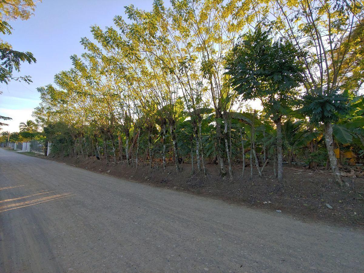Terreno Para Agricultura Con Cacao y Platanoimage6