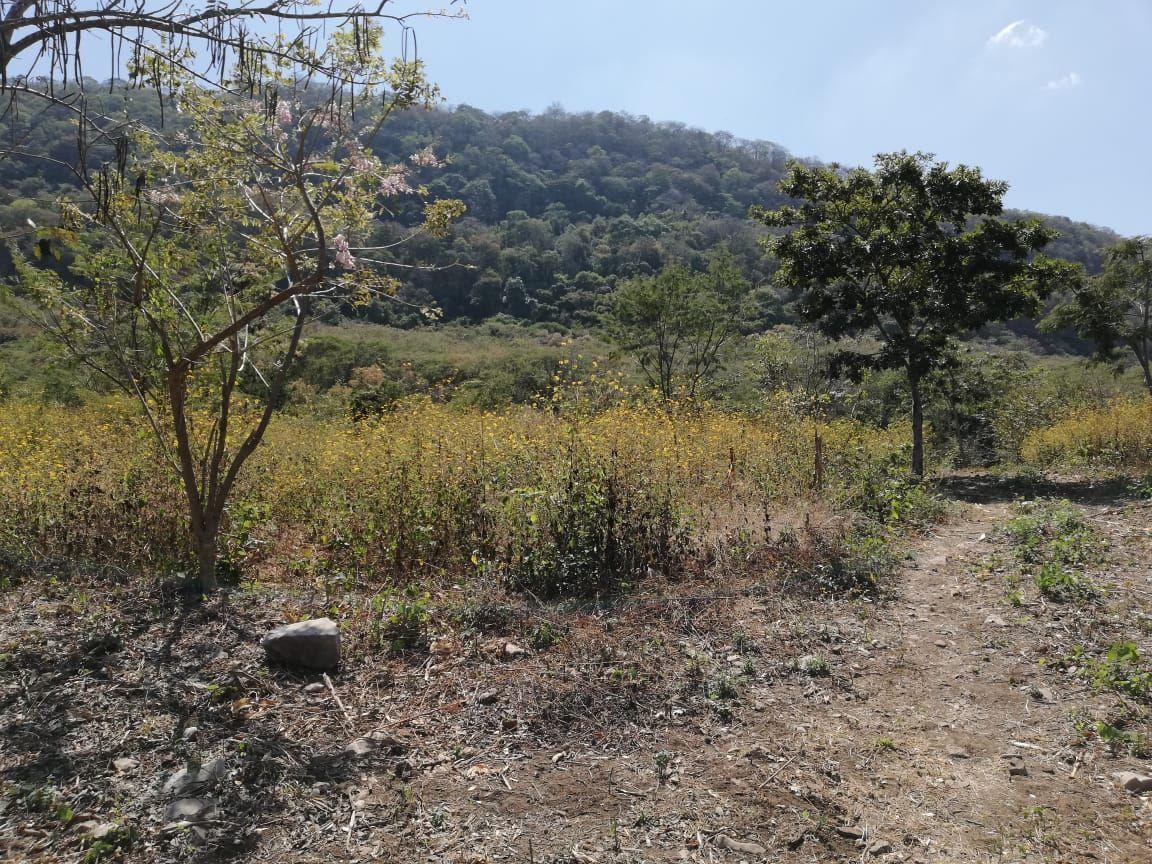 14 de 32: Vista lateral izquierda de la propiedad