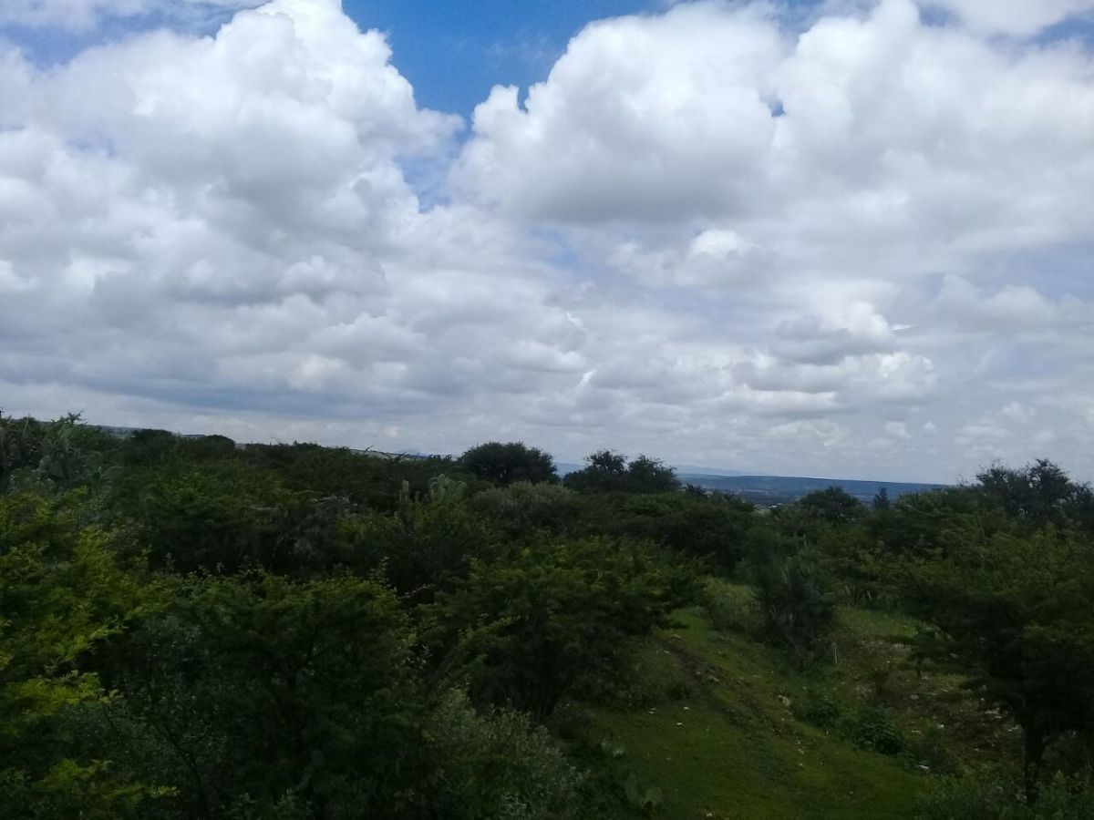 3 of 4: Quiet atmosphere/ Ambiente tranquilo