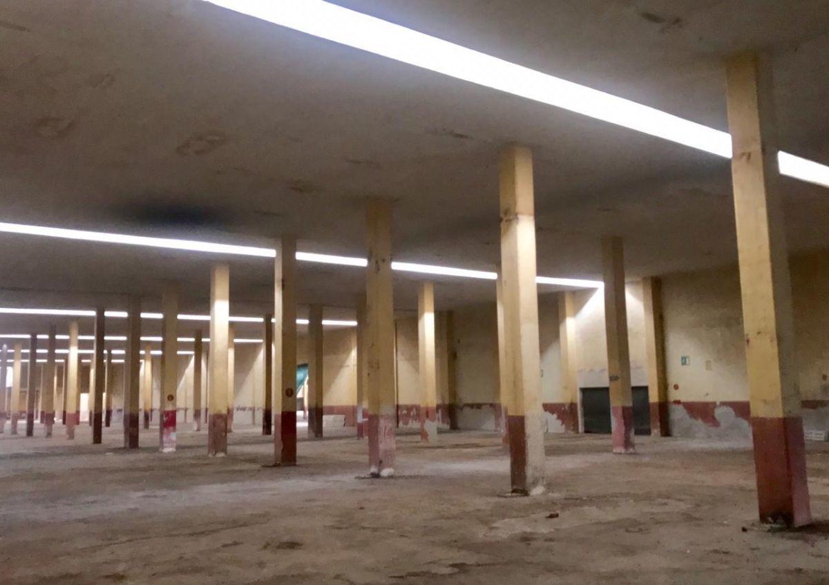 6 de 13: Bodega en Renta en Mérida, Yucatán, Chichen Realty