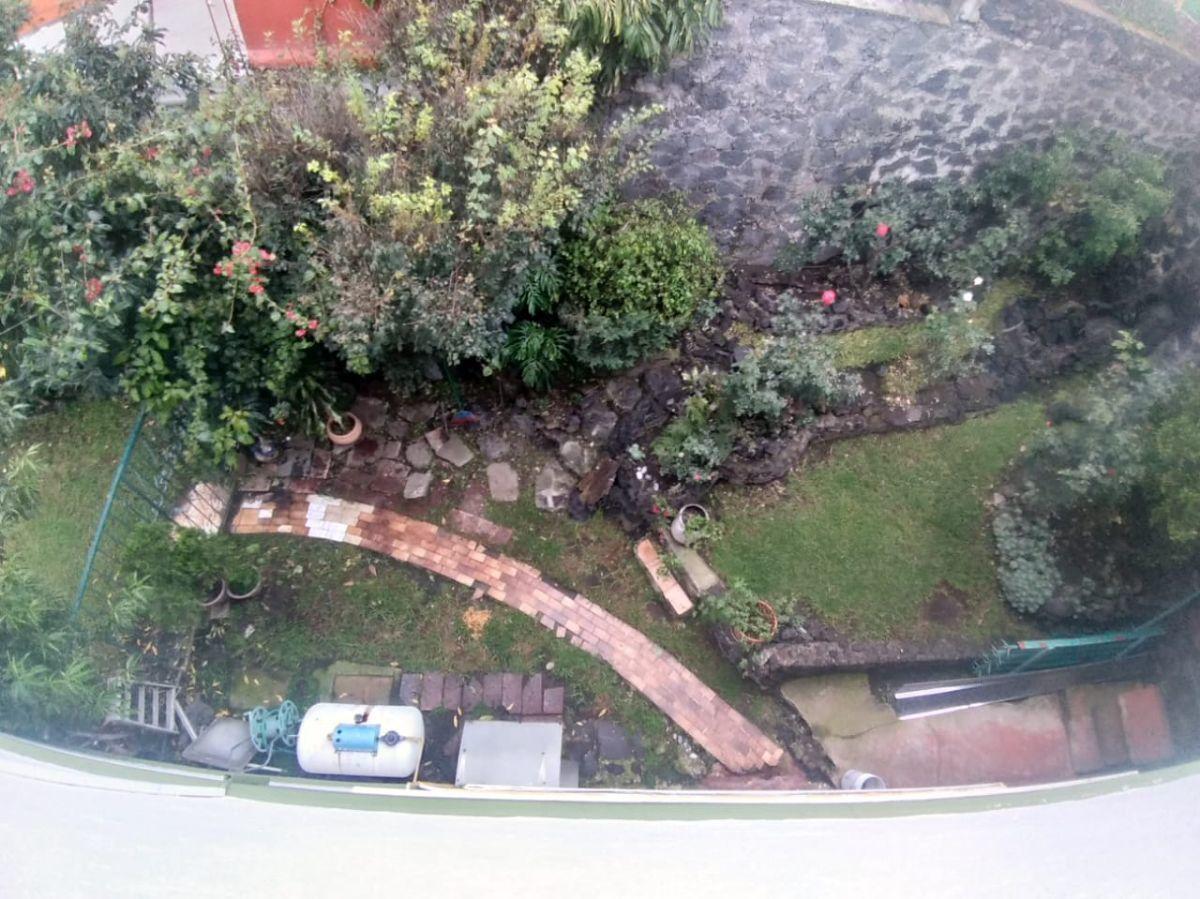 13 de 14: Jardín