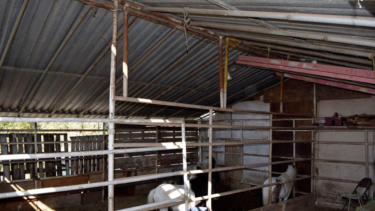 10 de 13: Casas en Venta en Colonia Loma Bonita PMR-430