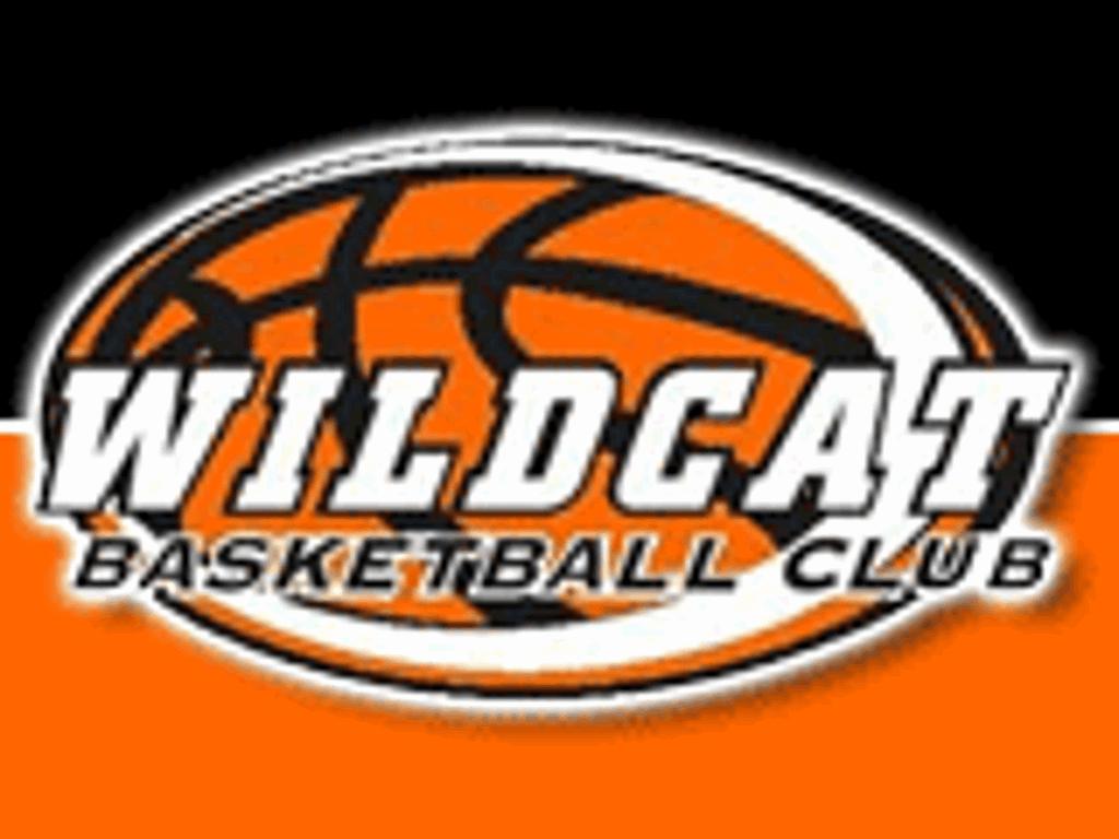 Wildcat Boys Basketball Club