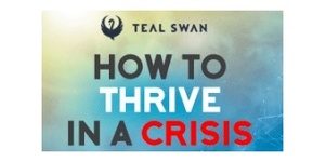 TEAL SWAN Cash Back, Descontos & coupons