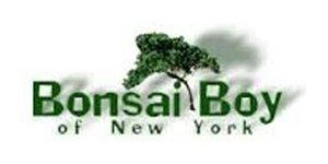 Bonsai Boy of New York Cash Back, Discounts & Coupons