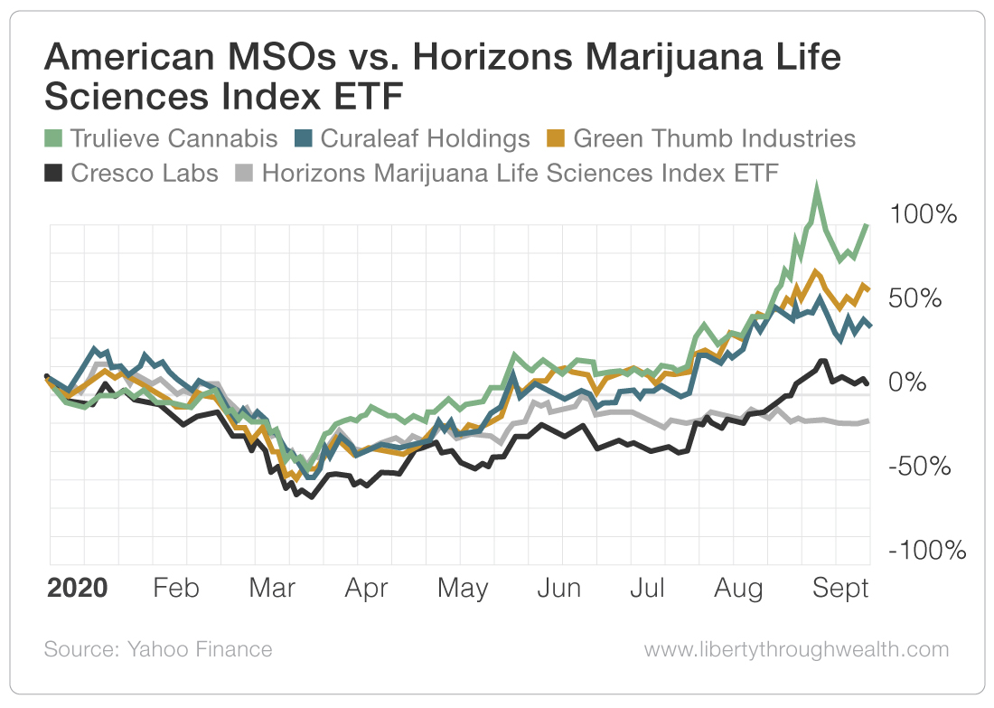 American MSOs