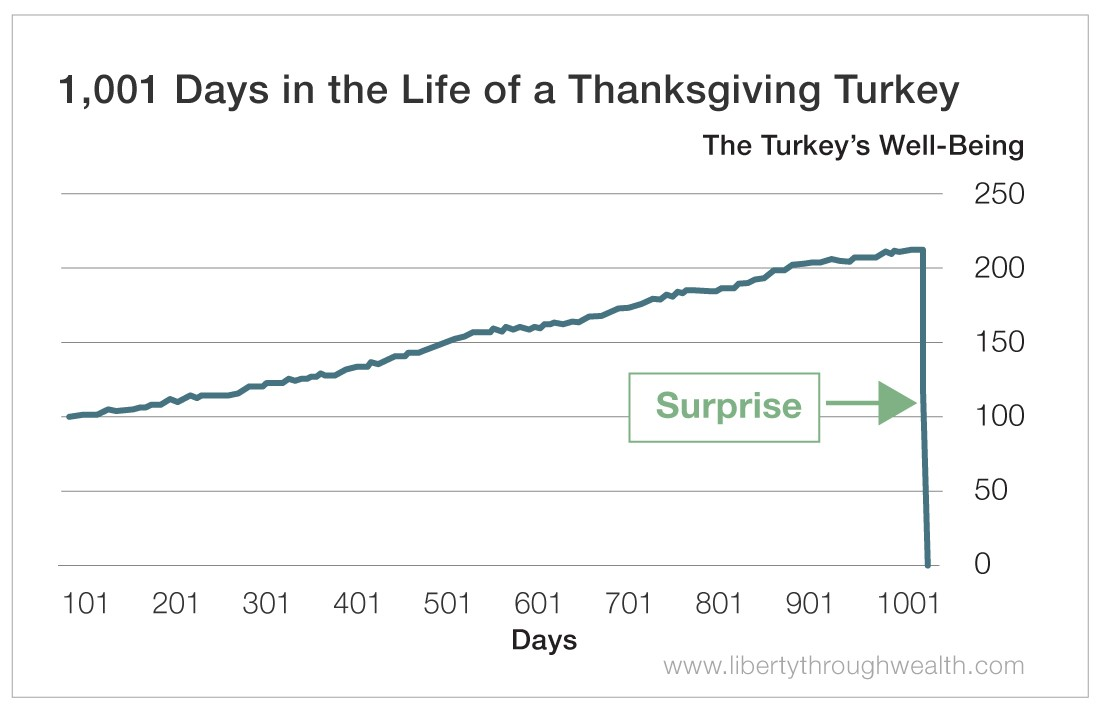 1001 Days in the Life of a Thanksgiving Turkey