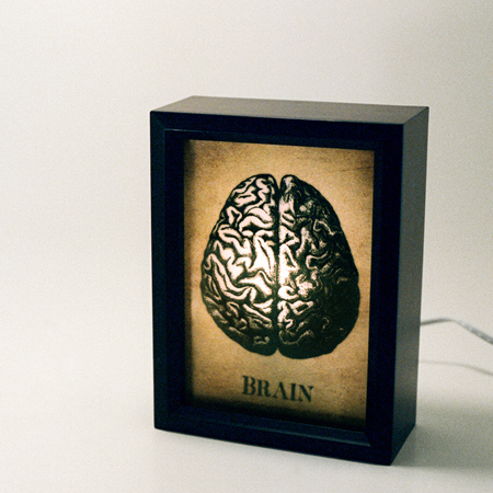 brain lightbox by munstre