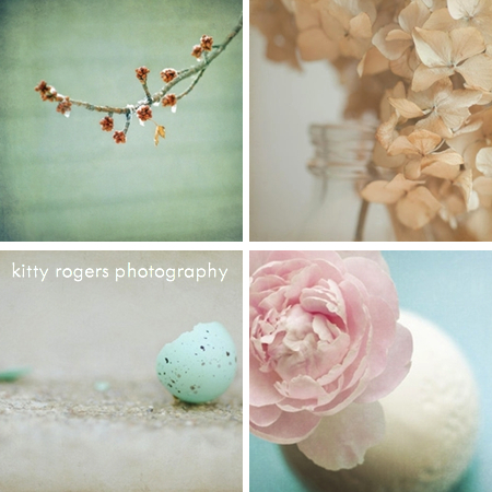 kitty rogers photography