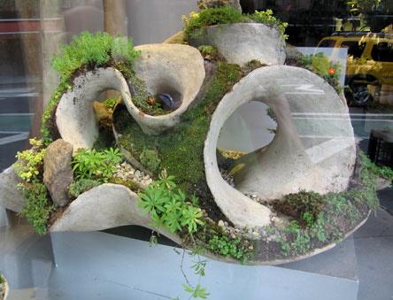 succulent statues