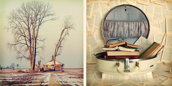 Vintage style photography  40% off sale at The Light Fantastic - Paper and Stitch