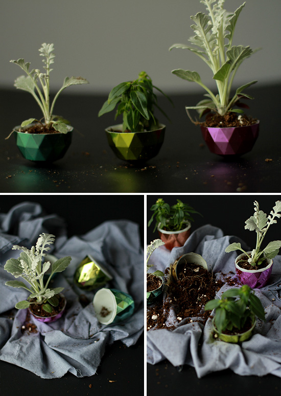 mini diy facet planter