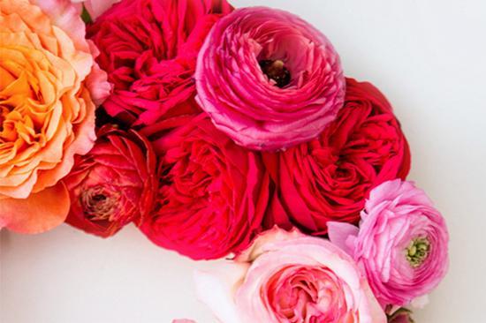 garden roses & ranunculus