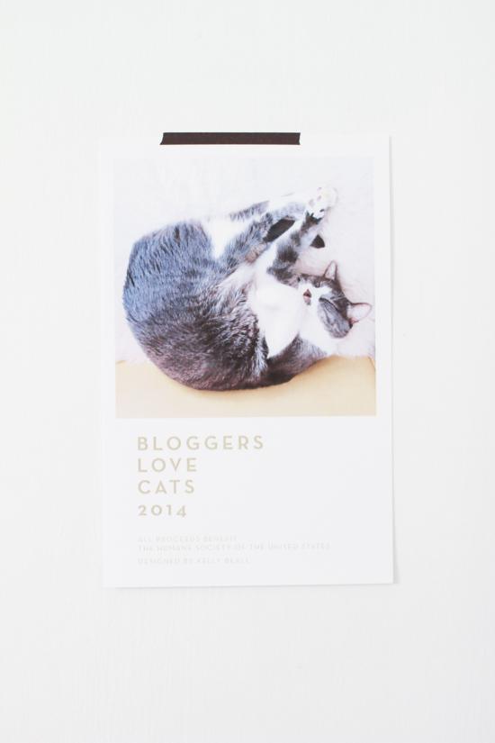 kitty-calendar-11