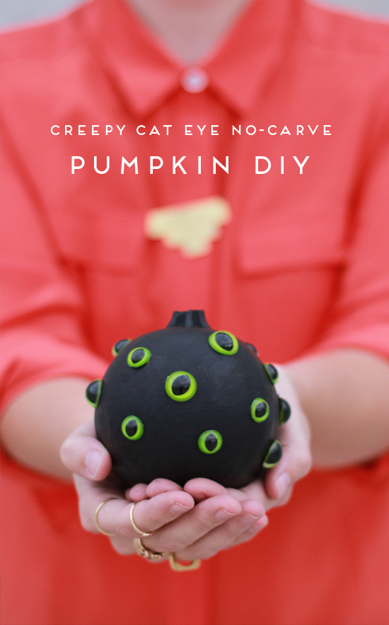 no carve pumpkin project