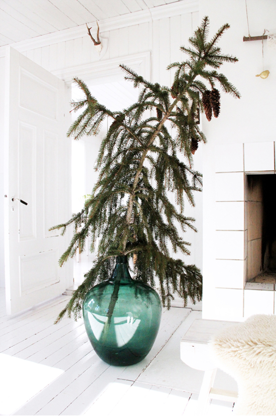 Christmas Tree in a Vase