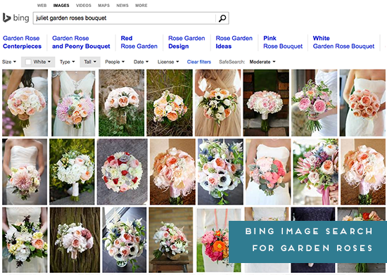Bing Image Search // Juliet Garden Roses