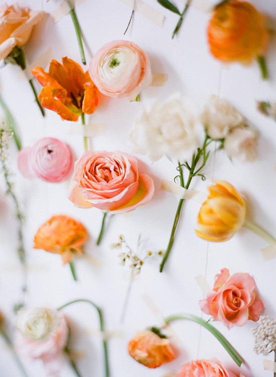 Flowers taped to the wall // from Ali Harper Photography and stylist Ginny Branch